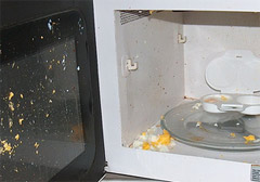 why not to put an egg in the microwave